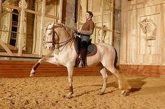 L'Académie équestre de Versailles reprend du service, toujours sous la direction artistique de l'écuyer Bartabas. Profitez des spectacles tous les week-end.La saison 2016 de l'Académie équestre de Versailles qui a débuté le 13 février, vous propose jusqu