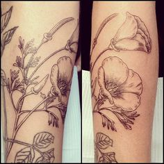 Sara Lou Tattoo in Los Angeles did a great job capturing this delicate botanical illustration of the California poppy. Source: Instagram user saraloutattoo