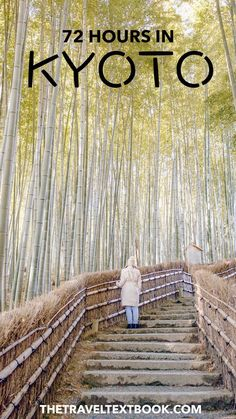 Come and explore the beauty and history of Kyoto, Japan. Bamboo groves, famous Shinto shrines, and stunning old streets await you in this cultural capital. #Kyoto #Japan #Travel #JapanTravelHolidays