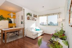 Ganhe uma noite no Sunny flat near Vila Madalena - Apartamentos para Alugar em São Paulo no Airbnb!