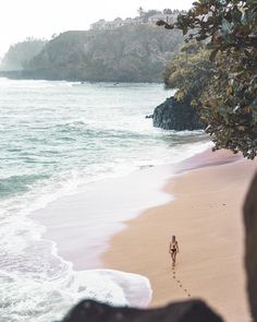 The Complete Kauai Travel Guide includes the island's best beaches, where to eat, and what to do on your trip so you can experience Hawaii like a local.