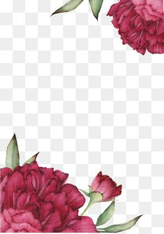 Pin by darse on ресурсы in 2019 Apple Wallpaper Iphone, Wallpaper Backgrounds, Apple Iphone, Wallpapers, Flower Frame, Flower Art, Chinese Wedding Invitation, Paper Bag Design, Design Floral