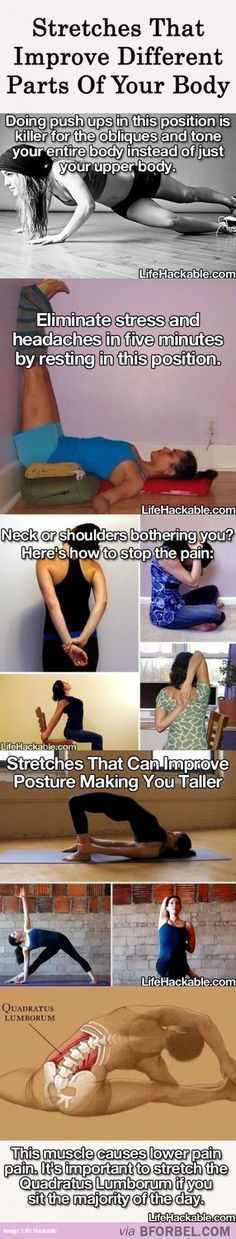 Stretches that improve parts of your body