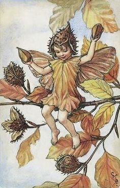 Cicely Mary Barker | The Beechnut Fairy