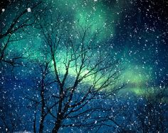 Aurora Borealis winter photography northern lights blue by bomobob, $30.00