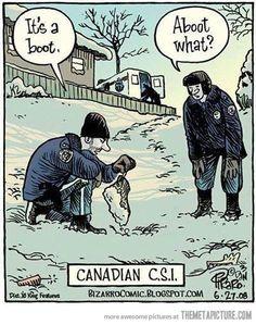 Canadian Investigators