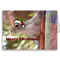 Merry Christmas from the Squirrel Greeting Card