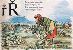 Learning About the Czech Alphabet Alphabet Words, Alphabet Print, English Alphabet, School Posters, Make A Donation, Jaba, Textbook, Activities, Learning