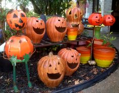 Fall in love with fall at the Pottery Shop. Clinton, Arkansas.