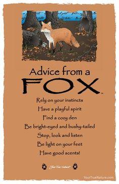 :-) Advice from a Fox Frameable Art Postcard