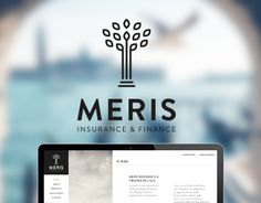 Logo and Website for company specialized in finance and insurance.