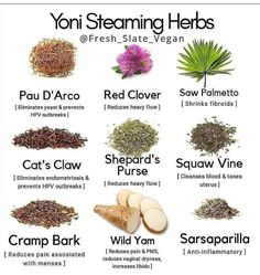 LaJao Yoni Steaming Herbs for V Steam, Herbal Steaming for Women, 2 Ounce Steams Vaginal Steam Home Spa, Natural Organic Herbal Blend for Menstrual Cycle Menopause Fertility V Detox Steam Healing Herbs, Natural Healing, Natural Fertility, Herbs For Fertility, Fertility Blend, Holistic Healing, Natural Health Remedies, Herbal Remedies, Yoni Steam Herbs