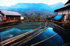 Bambous immergent dans l'eau chez l'habitant à Sapa. En savoir plus : http://www.amica-travel.com/vietnam-sites-a-decouvrir/nord-vietnam/sapa Crédit Photo : Eyebeam Photography