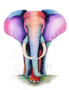 A4 size Colourful ELEPHANT Art  Signed Print from an original watercolour painting by artist Maria Moss