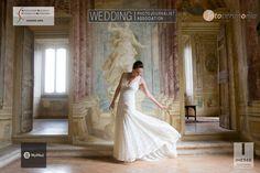 Comunicato Stampa: Fotografo matrimonio Inesse - Nuovo sito online