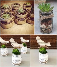 Succulents are easy to grow and manage. They require very less care and can survive indoors as well. And if you want to have hints of plants in your Succulents In Glass, Succulent Pots, Wall Planters, Planter Pots, Sea Shells Image, Brick Images, Pot Image, Wine Bottle Corks, Wedding