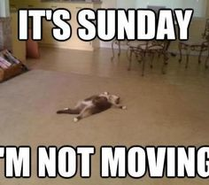 Anybody else feel this way on Sundays?