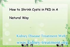 How to Shrink Cysts in PKD in A Natural Way
