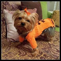 Dog dress-Big and Small Dog Costume-Dog by RainbowPetShop on Etsy