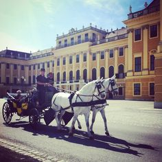Vienna - Schönbrunn Palace - If you want to live like an emperor or empress for some days, feel free to contact us.at/Suite-Schloss-Schoenbrunn/en/ Visit Austria, Heart Of Europe, Central Europe, Travel Memories, Eastern Europe, Emperor, Alps, Day Trips, Vienna