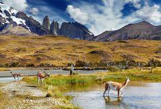 Parque Nacional Torres del Paine é parada obrigatória no Chile.