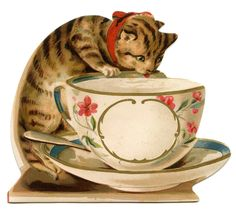 Vintage Image - Cat with Tea Cup- would make a dope card