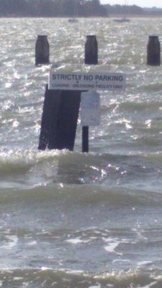 """""""Just don't park your car on Shore Road or you can watch it floating (or just sinking) at high tide. Chichester, Sea, Places, Ocean, Lugares"""