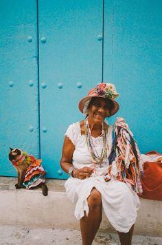 Blue Cattleya : Foto. Havanna Cuba. Love the cat in the background.