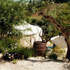 Quinta Laranja | kindvriendelijk | glamping Portugal