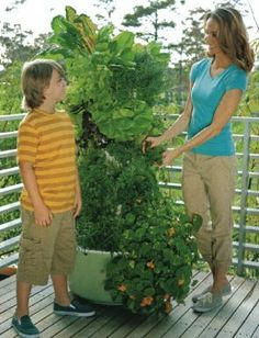 A New And Improved Way To Grow Your Fruits And Vegetables. Dirt Less, Weed  Less, Less Bugs, And It Can Be Grown Inside Or Outside...The Tower Gardeu2026