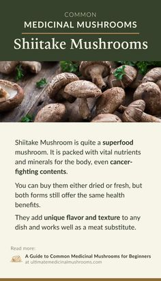 Check out this beginner's guide to common medicinal mushrooms. This is a helpful tool to learn which types of mushrooms are used for. Health Benefits Of Mushrooms, Mushroom Benefits, Minerals For The Body, Poisonous Mushrooms, Mushroom Hunting, Meat Substitutes, Best Protein, Easy Casserole Recipes, Mushroom Recipes