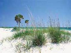 St. Andrews State Park Campsites B 4607 State Park Ln., Panama City, FL 32408 Ph: 850-233-5140    Region: East End