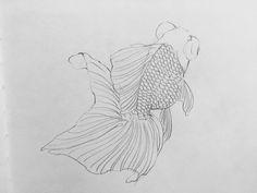Fish Drawings, Cute Drawings, Carpe Koi, Sketch Painting, Animal Sketches, Irezumi, Mermaid Art, Fish Art, Goldfish