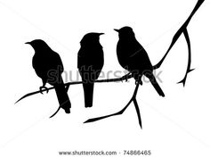 vector three birds on the branch - stock vector