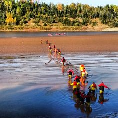 Wading in the mud, all part of the fun of tidal bore rafting in Nova Scotia. Http://www.raftingcanada.ca or from our campground  http://www.wowcamping.com