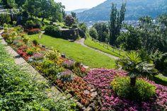 Philosophenweg (Philosopher's Path), Heidelberg