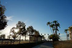 Harbor - San Diego