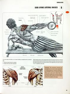 Side-Lying Lateral Raises