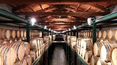 2014 Barolo: Surprise, Surprise ... (février 2018) | Vinous - Explorez tout le vin Surprise Surprise, Wine