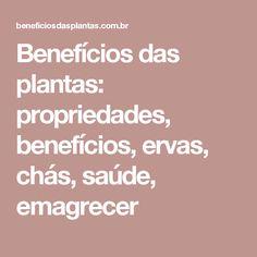 Benefícios das plantas: propriedades, benefícios, ervas, chás, saúde, emagrecer
