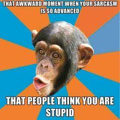 13 Best Memes Sarcasm Images Sarcasm Laughing Hilarious