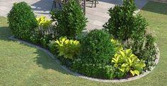 Ein Beet mit Pflanzen wie Kirschlorbeer, Japanische Hülse, Funkie, Arends Prachtspiere, Waldmeister und Efeu