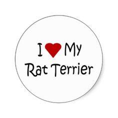 Love My Rat Terrier Dog Breed Lover Gifts Round Sticker