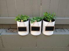 Baby formula tins make cute herb pots!