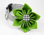 "Ordering this ""party collar"" for my Frenchie. Check out Bow Wow Couture on Etsy - really cool stuff."