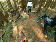Downhill Bike, Mtb Bike, Mountain Bike Action, Mountain Biking, Bmx, Dirt Bike Track, Bicycle Types, Mtb Trails, Funny Prank Videos