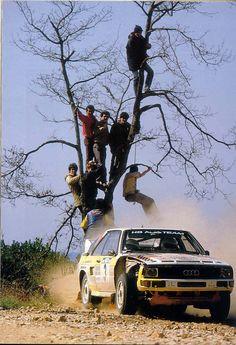 Audi Sport, Sport Cars, Race Cars, Rally Raid, Real Racing, Motosport, Car And Driver, Audi Quattro, Dream Cars
