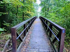 Discover 11 magical foot bridges hiding in Illinois that will transport you to another world. Don't miss these little-known enchanting hikes. Forest Trail, State Forest, Kankakee River, Starved Rock State Park, Forest Preserve, Trail Of Tears, Hiking Spots, Mountain Bike Trails, County Park