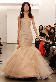 Sofia Vergara lace Vera Wang dress