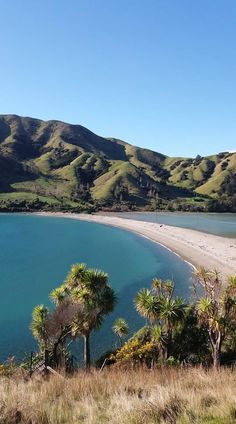 Cable Bay. Nelson 2017